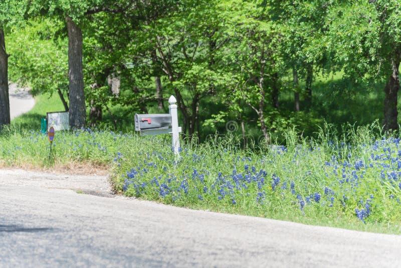 Bluebonnet fleurissant pr?s de la bo?te aux lettres de la maison de campagne dans le Texas, Am?rique image libre de droits