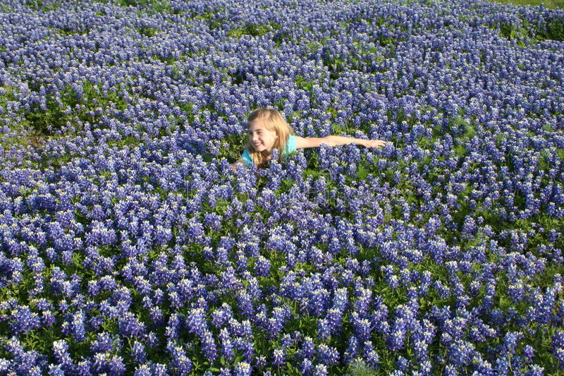 Field of blue bonnets in Texas. A girl in the middle of a field of blue bonnet flowers in Waxahachie Texas stock photos