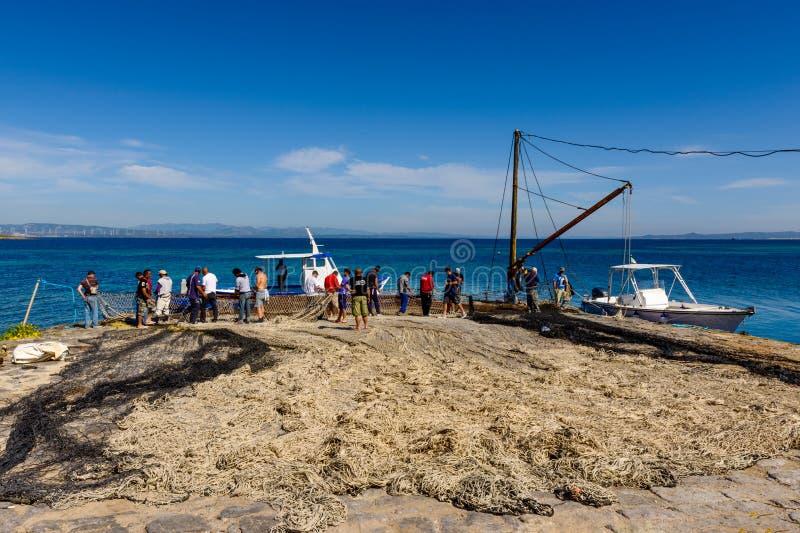 Bluefin Tuna Fishing på medelhavet, Thunnusthynnus, San arkivfoto