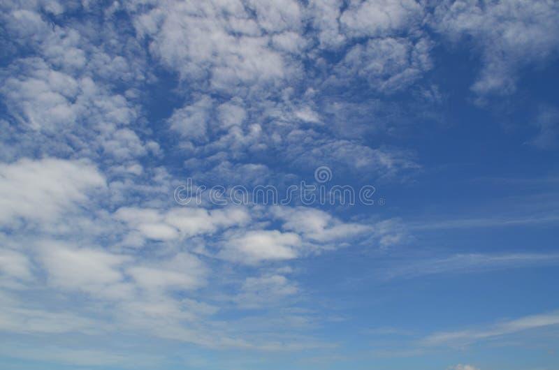 bluen clouds fluffig skywhite royaltyfri foto