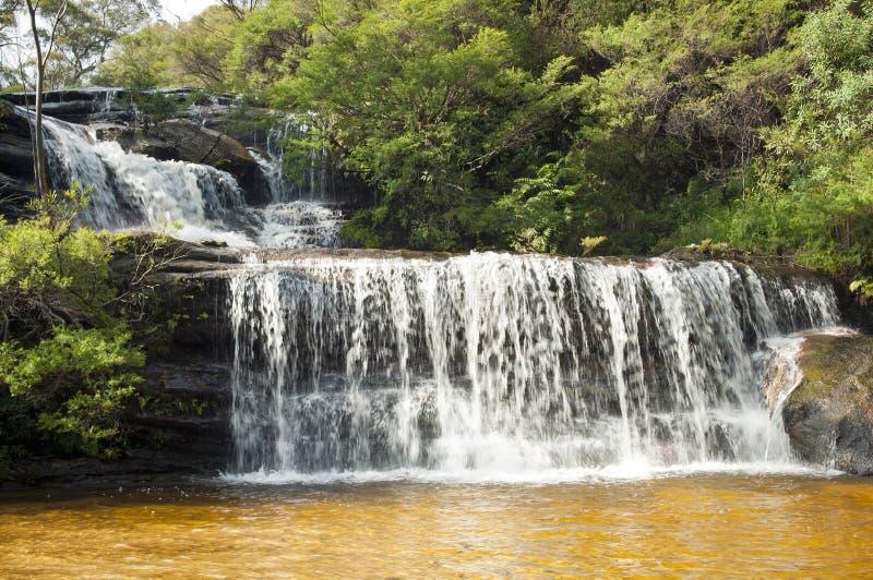 bluen faller bergvattenfallet wentworth fotografering för bildbyråer