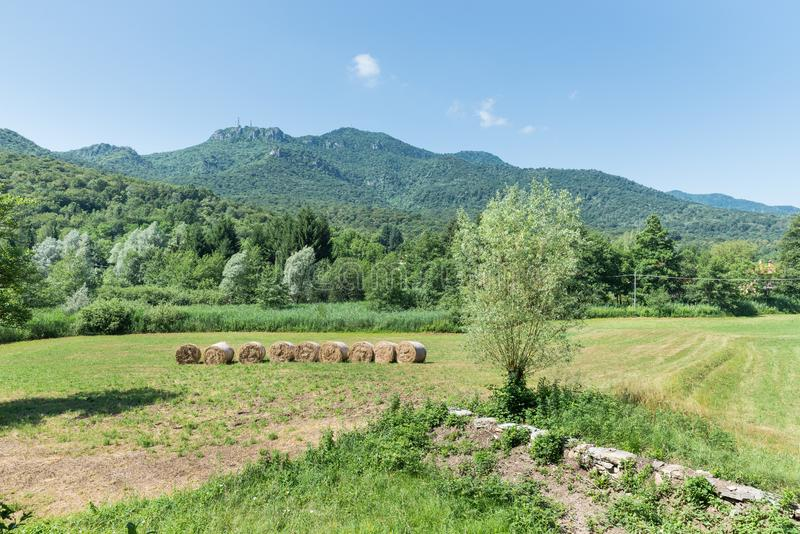 bluen fields den gr?na skyen Den Campo deien regionala Fiori parkerar, Italien arkivbilder
