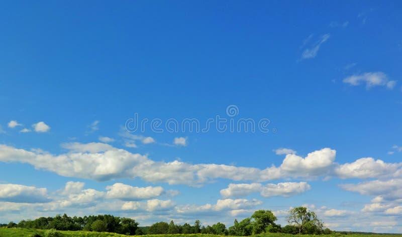 Blueness luminoso fotografie stock