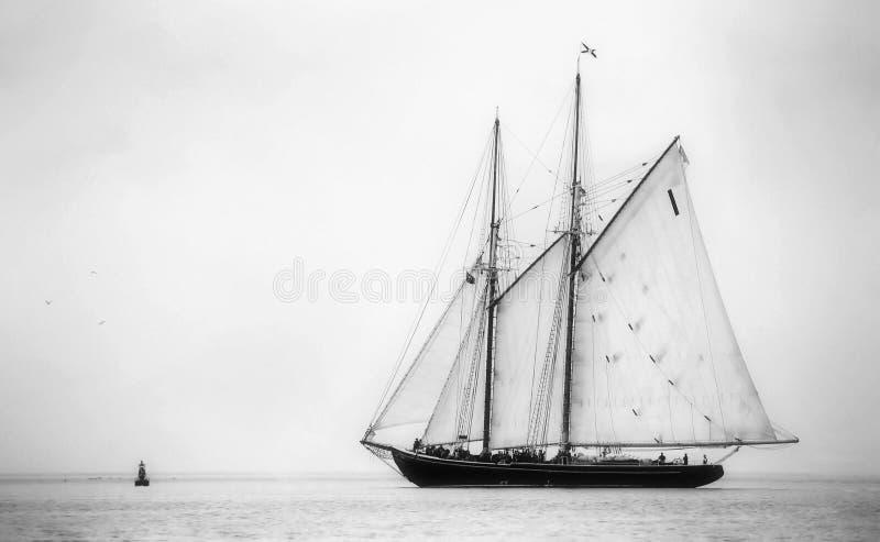 Bluenose ao mar fotografia de stock royalty free