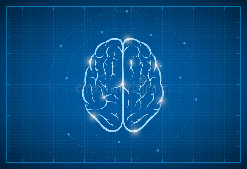 Blueprint Brain Symbol. Vector brain symbol on bluprint vector illustration