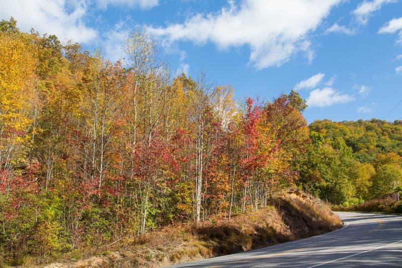Blueridge-Allee im North Carolina stockfotos