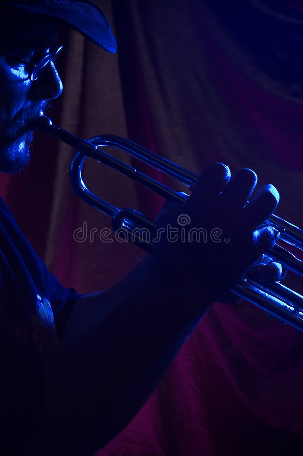 Download Blues Musician Stock Image - Image: 24301