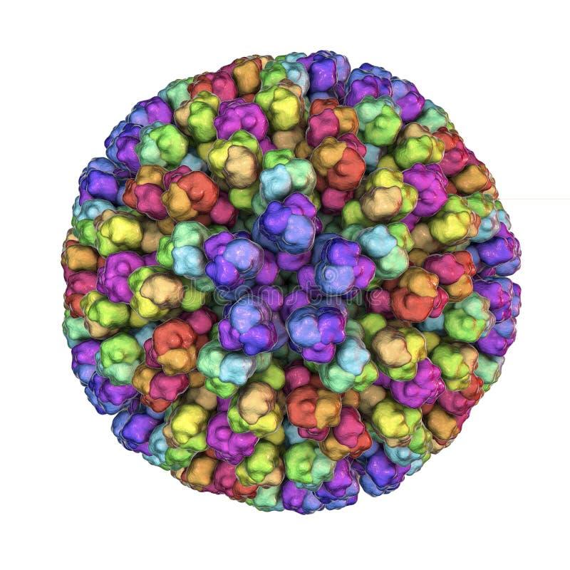 Bluetongue virus BTV vektor illustrationer