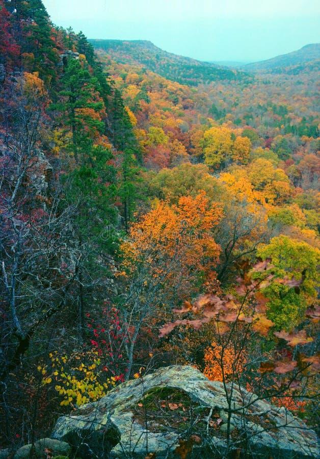 Bluff ed autunno fotografie stock libere da diritti