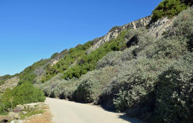 Bluff op Zout Kreekstrand in Dana Point, Californië stock afbeeldingen