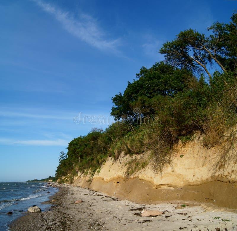 Bluff på det baltiska havet royaltyfri bild