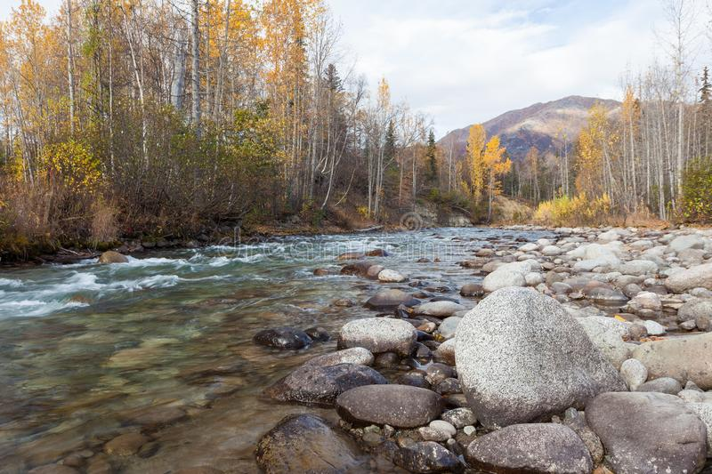 Rushing Alaskan River in Autumn. A bluish Alaskan river that is fed by glaciers with a rocky creek bed running through the valley with a mountain in the stock photography
