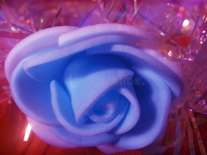 Bluish white flower petals against a sparkly red background stock photo