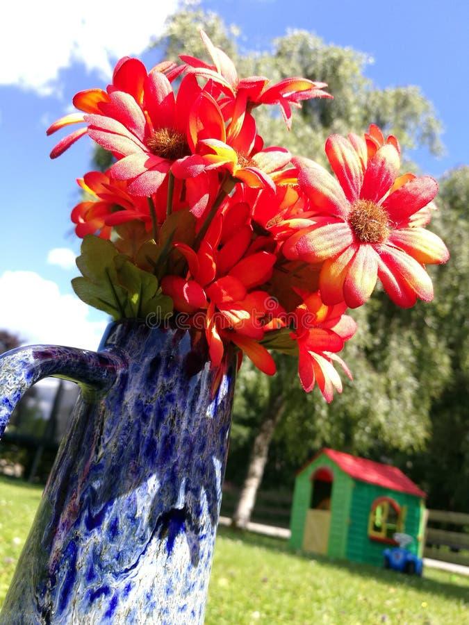 Download Blume stockfoto. Bild von blume, nett, blick - 96928662