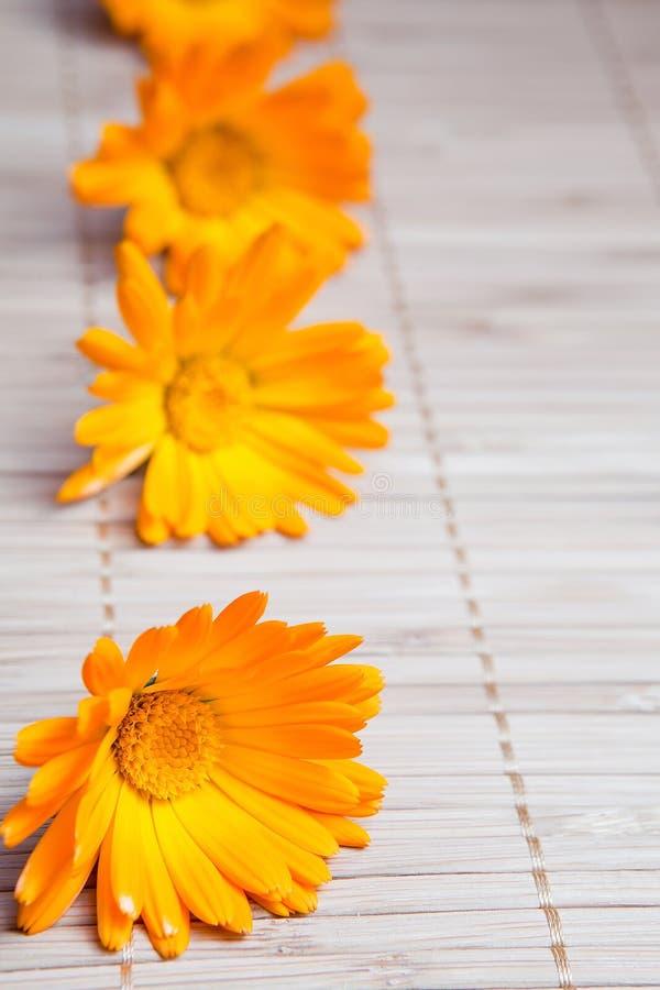 Blume auf Bambusmatte lizenzfreies stockbild