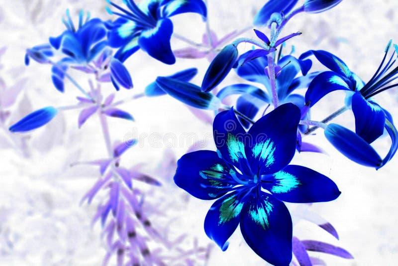 Blume 3d stockfotos