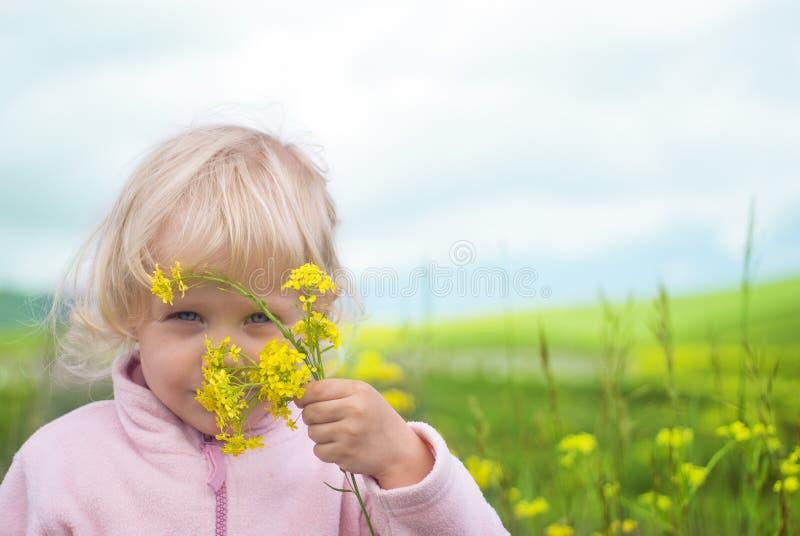 Blume des kleinen Mädchens auf dem Gebiet stockbild