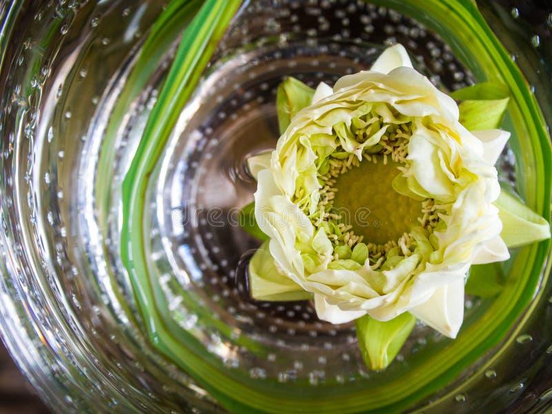 Blume des weißen Lotos, die in runde Glasschüssel schwimmt stockbild