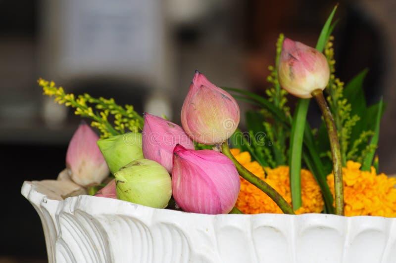 Blume für buddhistische religiöse Feier stockbilder