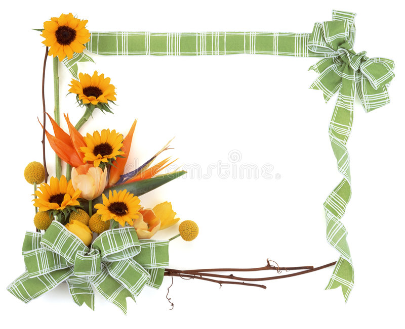 Blume Frame-5 lizenzfreie abbildung