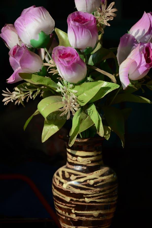 Blume gefunden in Thailand stockbild