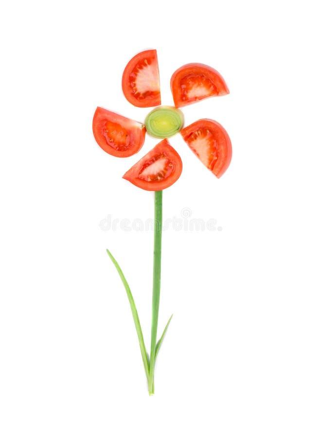 Blume gemacht von der Tomate und von der Zwiebel lizenzfreies stockfoto