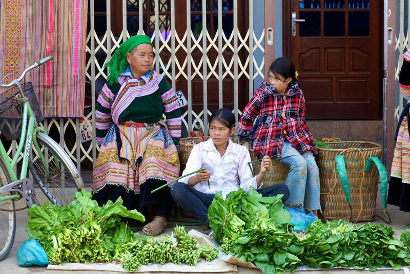Blume Hmong Minorität-Leute Vietnam stockfoto