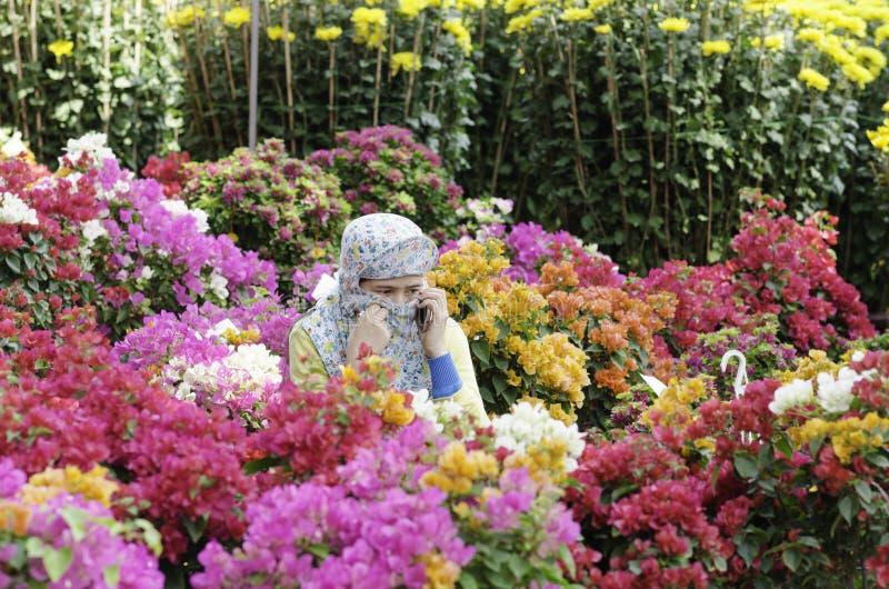 Blume Maket stockbilder