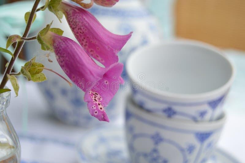 Blume mit Kaffeetassen stockfotos
