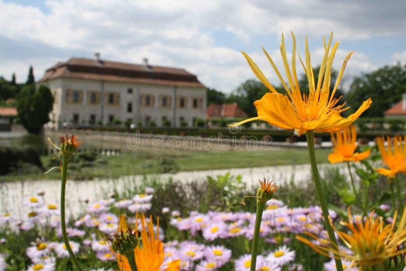 Blume und Schloss lizenzfreie stockfotografie