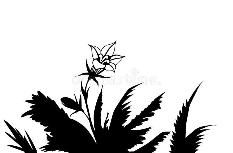 Blume unter Kräutern stock abbildung