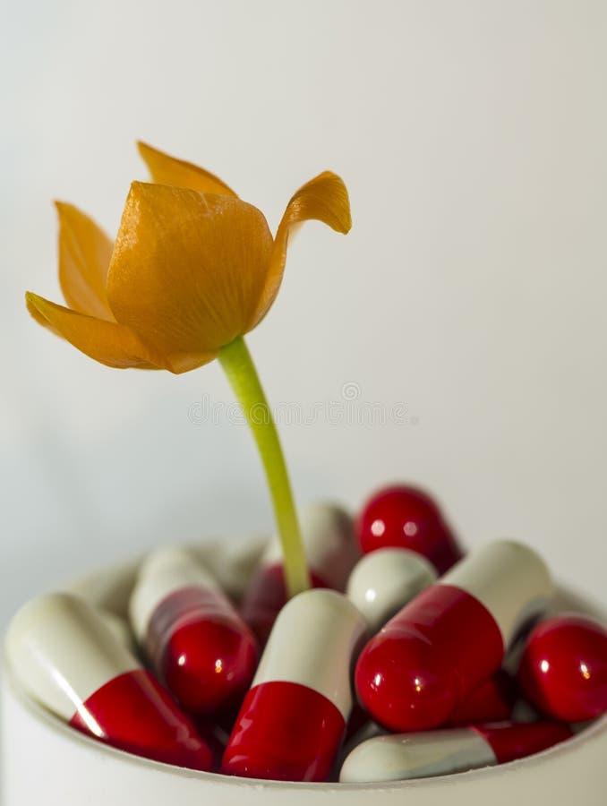 Blume von den Pillen lizenzfreie stockfotografie