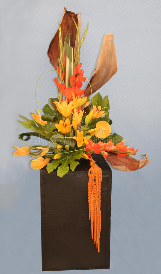 Blumen-Anordnung. lizenzfreies stockbild