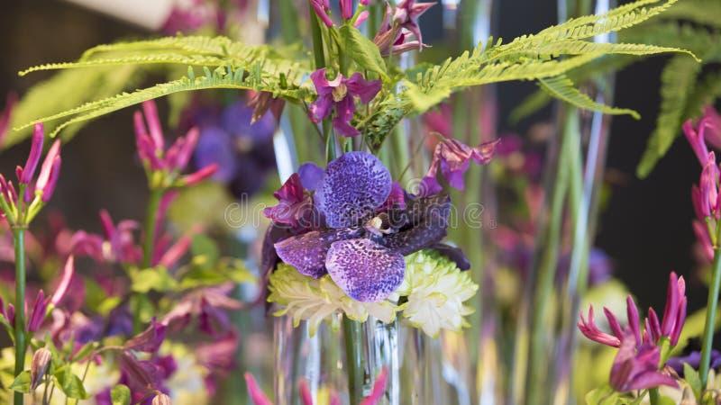 Blumen-arrangemen blaue Orchidee, Chrysantheme und Farn stockbilder