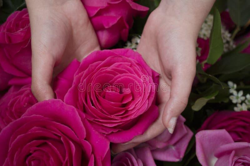 Blumen auf dem Fensterfoto stockfotografie