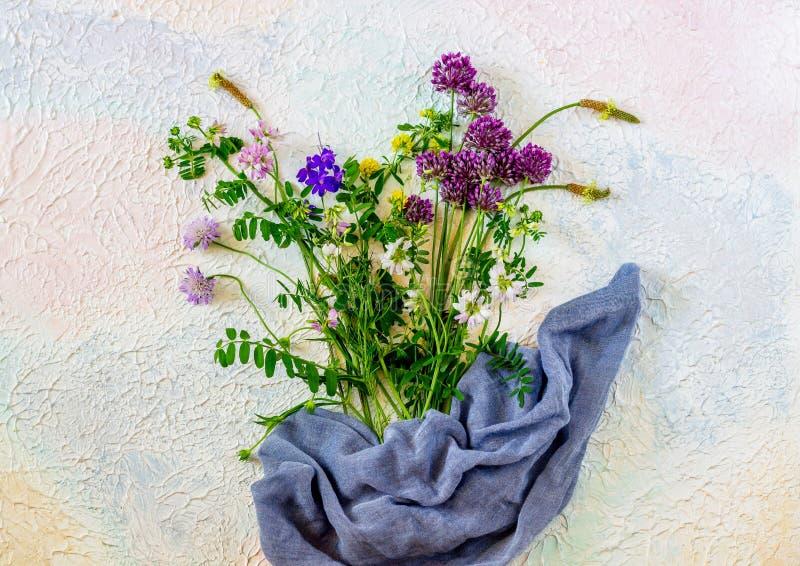 Blumen auf einem weißen rosa blauen Hintergrundhintergrund Minimales Konzept kreativ stockfotografie