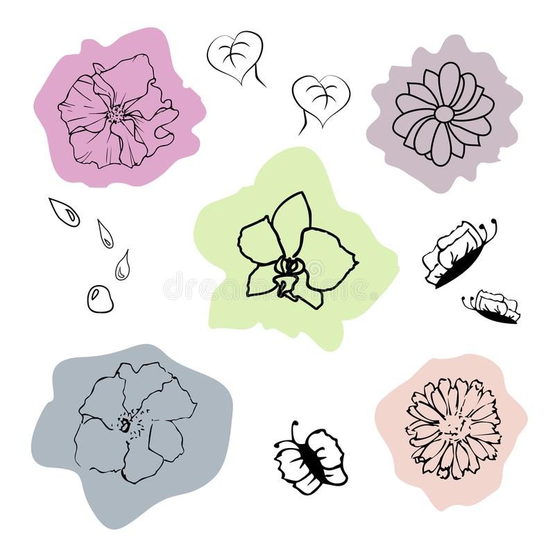 Blumen auf Hintergrund stockbild