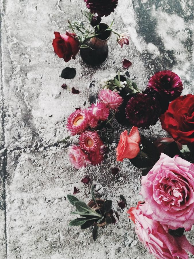 Blumen auf konkretem Flatlay stockbilder