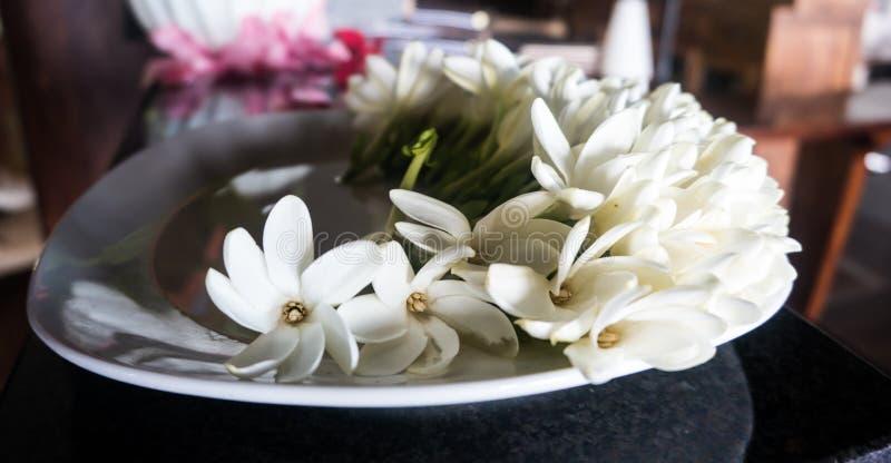 Blumen auf Platte stockbild