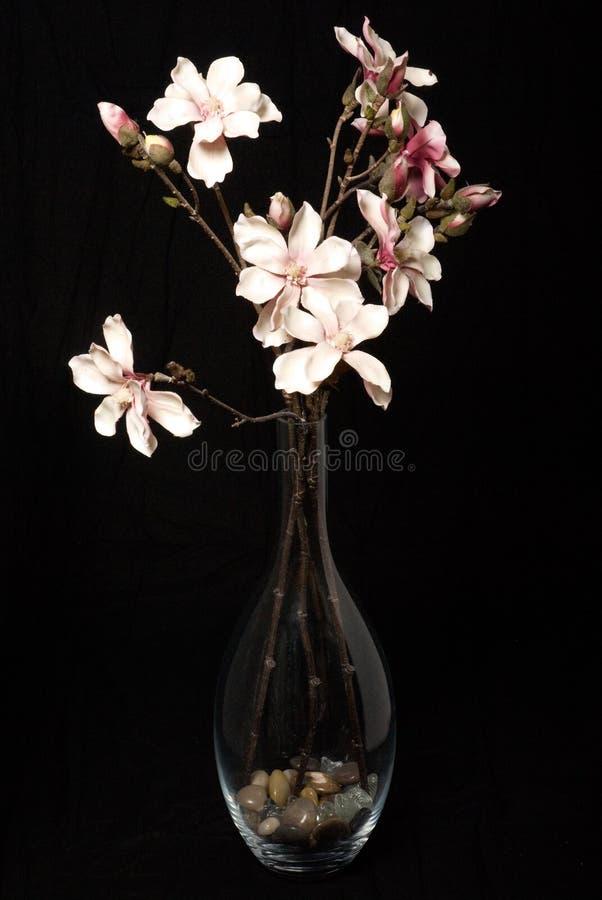 Blumen auf Schwarzem stockfotografie