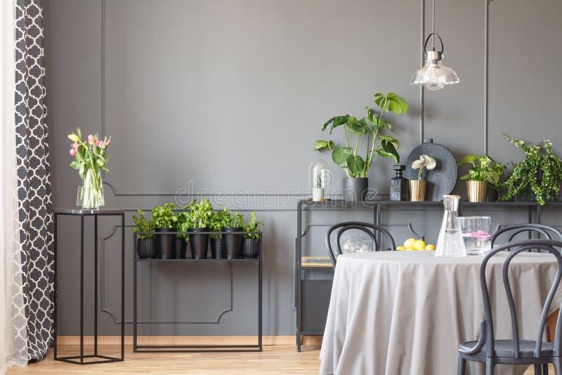 Blumen auf schwarzer Tabelle nahe bei Anlagen in grauem Esszimmer interi lizenzfreie stockfotografie