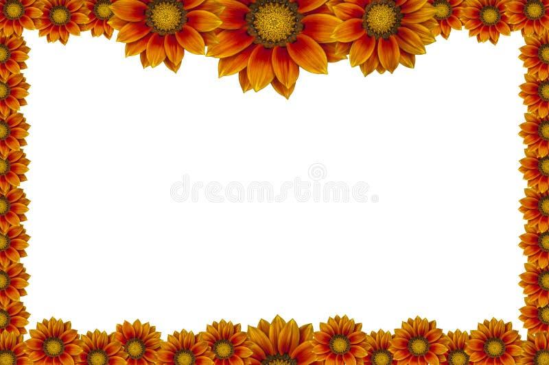 Blumen Bilderrahmen blumen bilderrahmen lokalisiert auf weißem hintergrund stockfoto