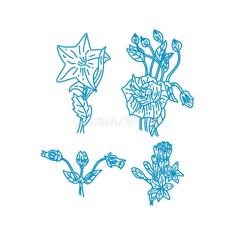 Blumen-Blatt-Illustrations-Entwurfs-Schablonen-Vektor linear vektor abbildung