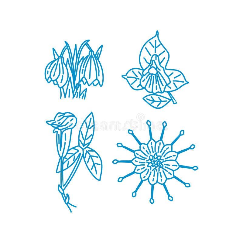 Blumen-Blatt-Illustrations-Entwurfs-Schablonen-Vektor linear stock abbildung