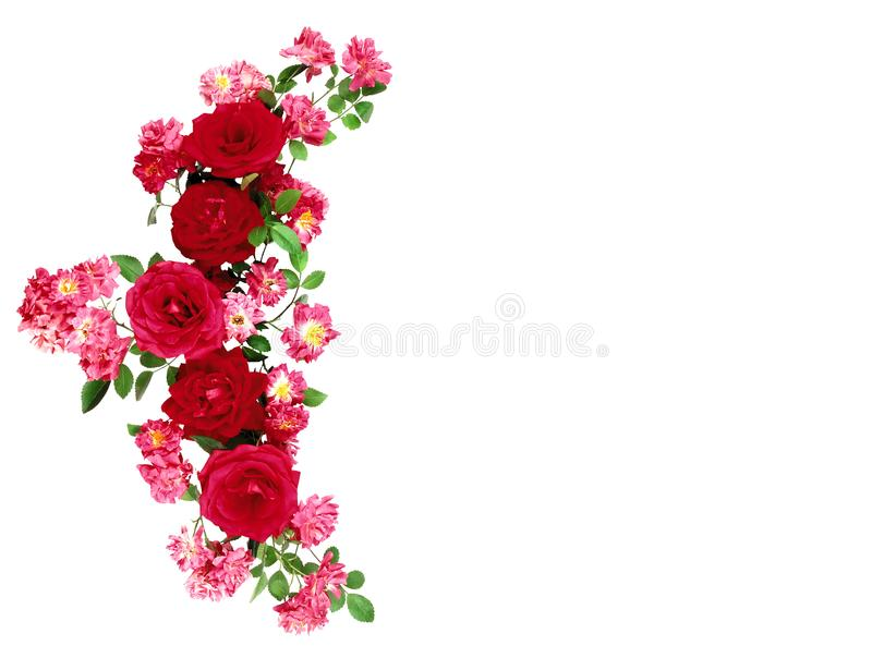 Blumen Bunter Blumenblumenstrauß getrennt auf Weiß stockbilder