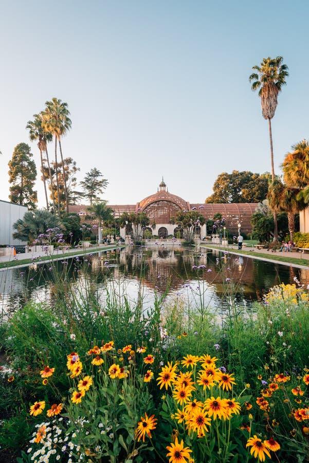 Blumen, das botanische Gebäude und Lily Pond am Balboa-Park, in San Diego, Kalifornien stockfotos