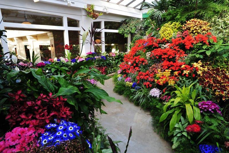 Blumen in den butchart Gärten stockbilder