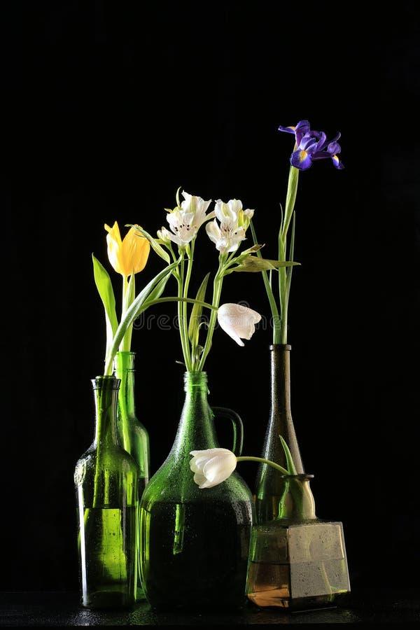 Blumen in den Flaschen lizenzfreie stockfotos