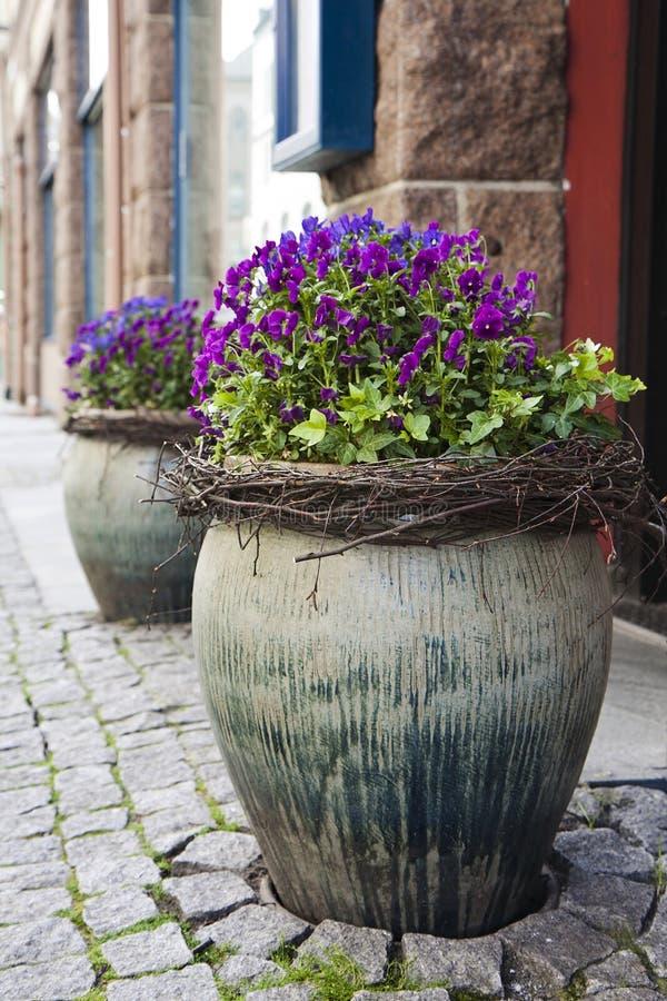 Blumen in den Straßentöpfen lizenzfreies stockbild