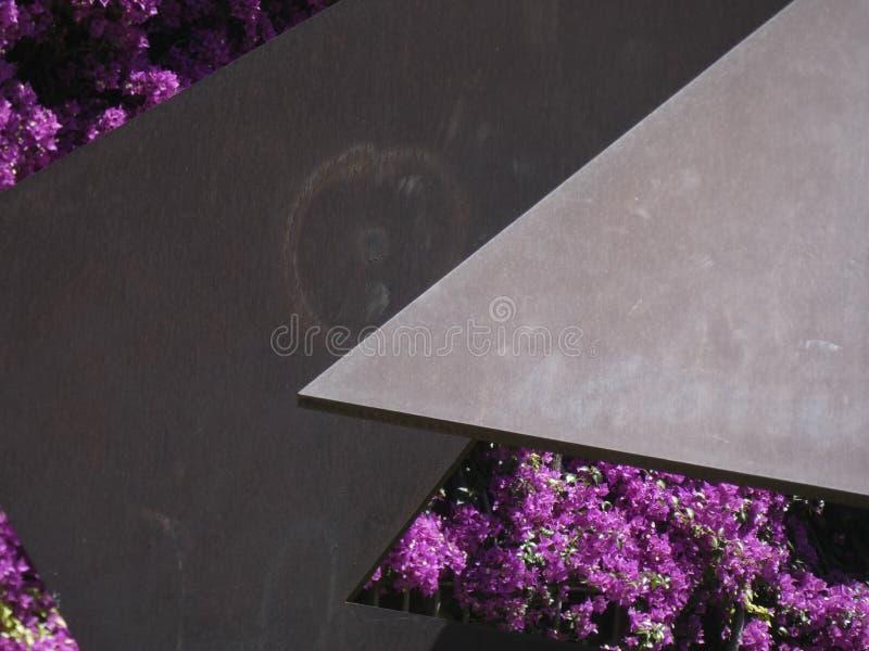 Blumen der rötlichen Farbe, der Kriechpflanzenanlage lizenzfreies stockfoto